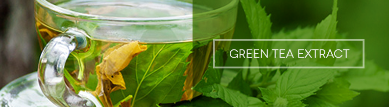 green_tea_extract