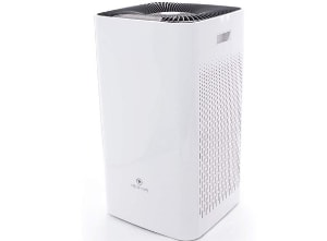 Top 10 Air Purifiers For Asthma Reviewed In 2019 Facentials
